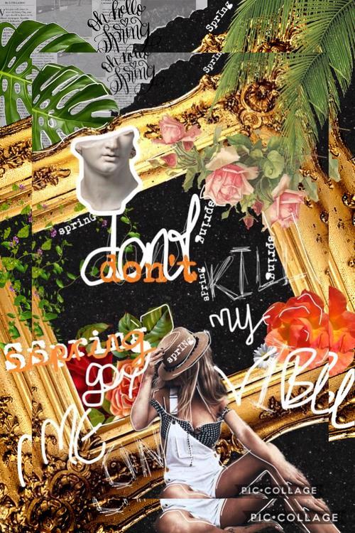 Assets?key=434c295b0382efb8caf795da12e5ebe8&collage id=172783573&size=500x500