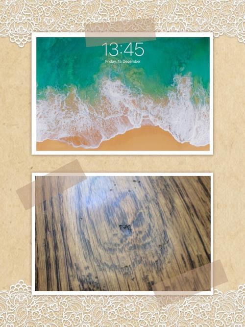 Assets?key=62631e69ae972ab37a2e16861cdd8acf&collage id=169562953&size=500x500