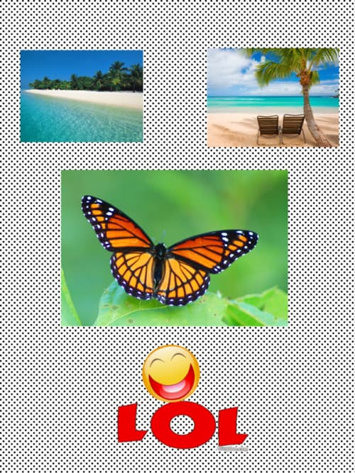 Assets?key=7f2aac8a551b245869eae3d2eafe49f1&collage id=155646917&size=500x500