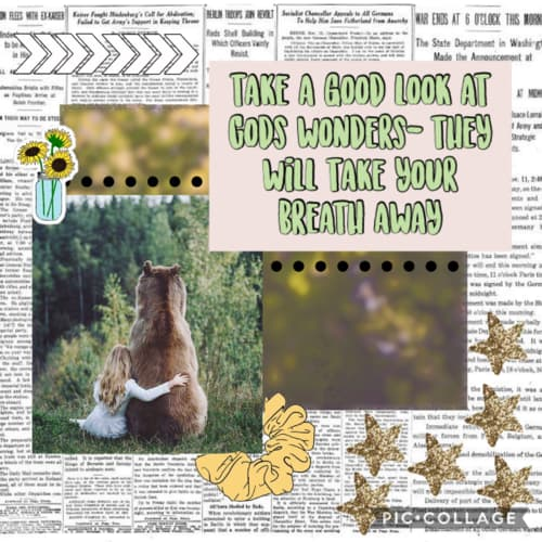 Assets?key=a8acdcc61567f66633475bd4fce9ad6e&collage id=173548056&size=500x500
