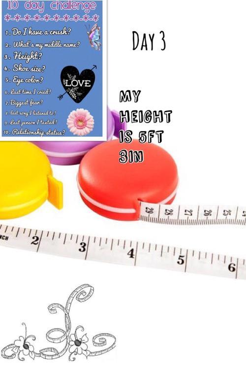 Assets?key=abbd58f4153ff9ee9c2c59b2f7560891&collage id=169413519&size=500x500